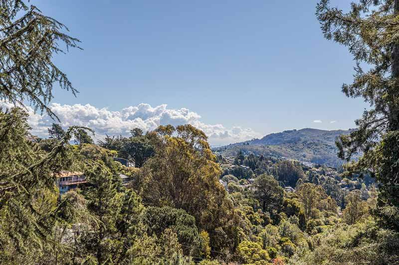 View from 1220 El Cide Ct, Mill Valley, CA