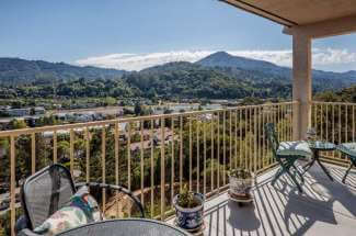 Big View Condo in Greenbrae