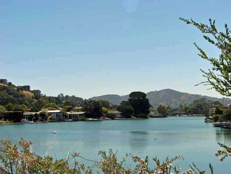 Belvedere Property Values