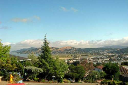 Greenbrae Real Estate