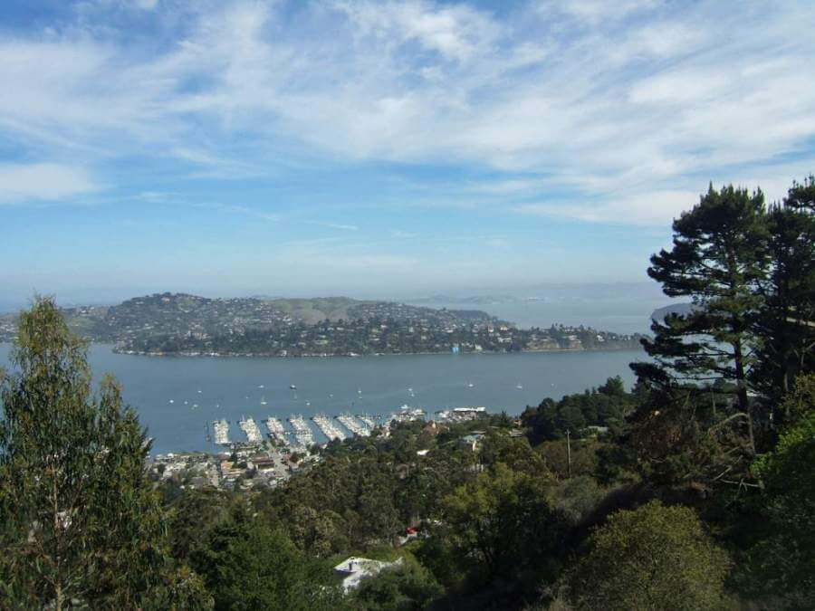 Richardson Bay fr Ridge