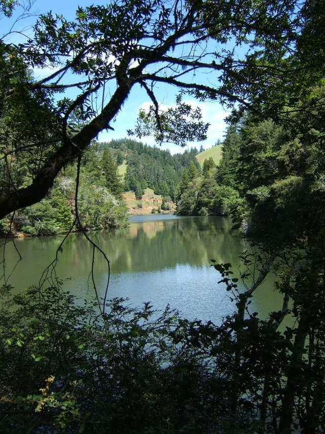 Phoenix Lake