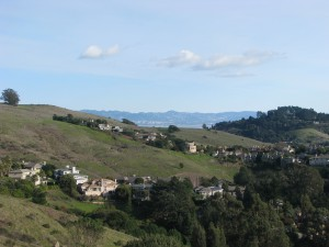 View of Tiburon Homes from Ring Mountain, Corte Madera, CA