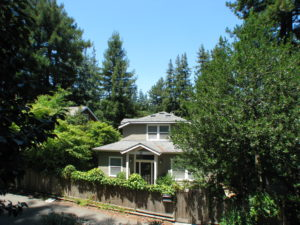 House in a redwood grove