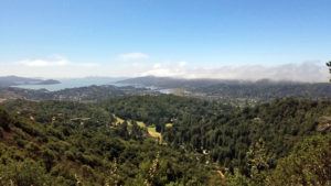 Mill Valley, CA from Mt Tamalpais to the bay