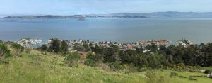 Paradise Cay and SAn Pablo Bay from Tiburon Ridge Open Space