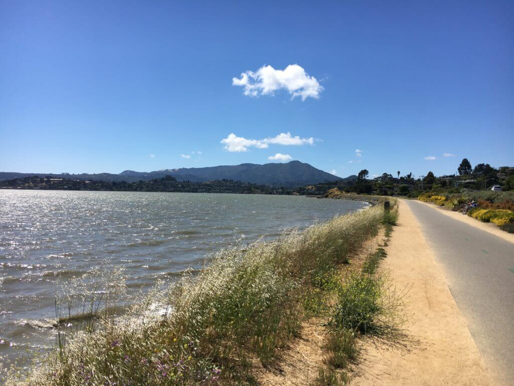 Tiburon Bay Trail with views of Richardson Bay and Mount Tamalpais