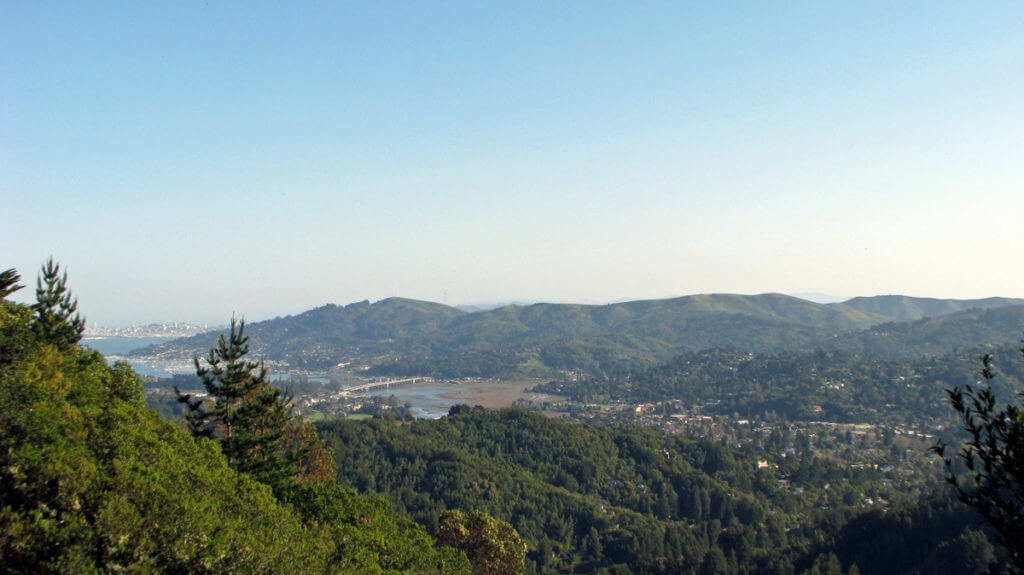Marin From Christmas Tree Hill Corte Madera