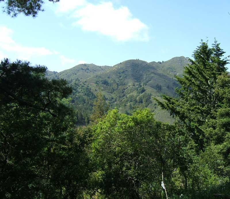 Mt Tamalpais from Panoramic Highway