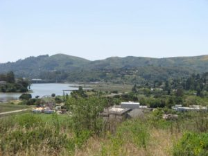 Richardson Bay in Mill Valley, CA