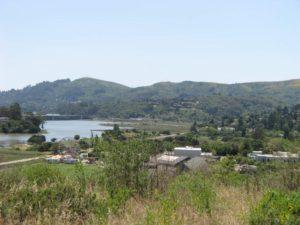 Alta Vista Marin County