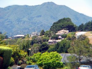 Houses on Marin County hill, Strawberry neighborhood, Mill Valley, CA