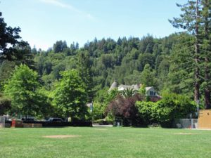 Marin Park VIew